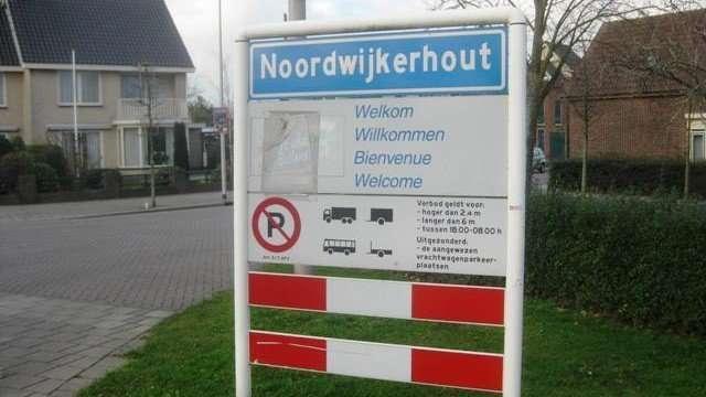 noordwijkerhout6981